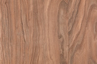 Prospects Toasted Chestnut Luxury Vinyl Plank Flooring